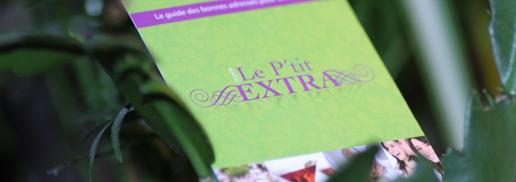 Des Cartes De Visite Du Guide Le Ptit Extra Recto Verso En 350g Pelliculage Brillant Sobre Et Design