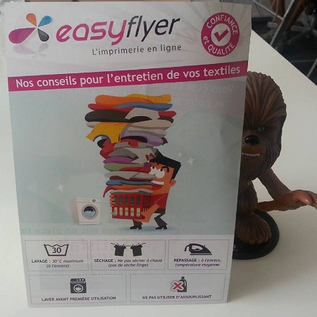 Flyers Easyflyer