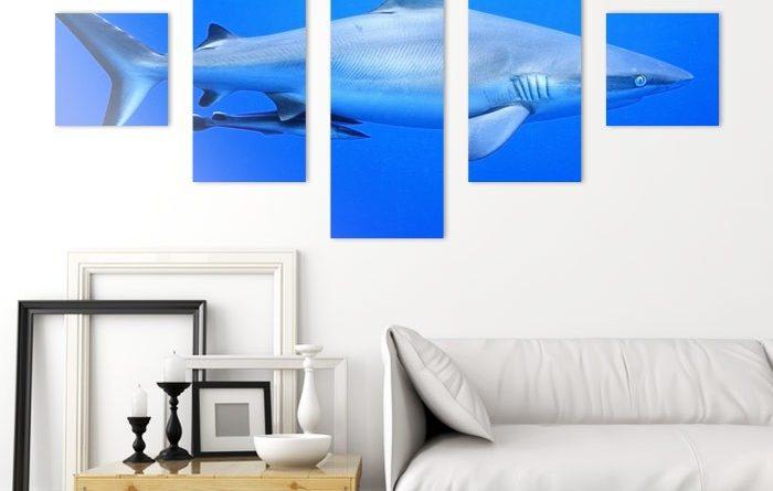 impression toile canvas triptyque personnalisé requin